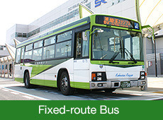 Fixed-route Bus