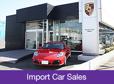 Import Car Sales