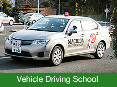 Vehicle Driving School